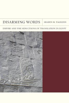 Disarming Words: Empire and the Seductions of Translation in Egypt - FlashPoints 5 (Paperback)