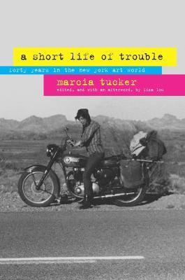 A Short Life of Trouble: Forty Years in the New York Art World (Paperback)