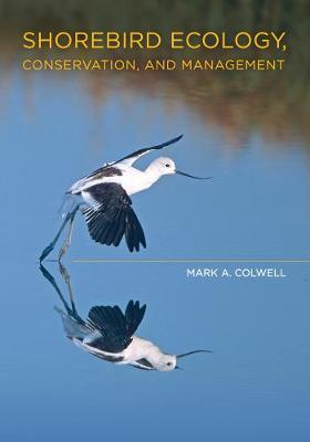 Shorebird Ecology, Conservation, and Management (Hardback)