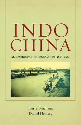 Indochina: An Ambiguous Colonization, 1858-1954 - From Indochina to Vietnam: Revolution and War in a Global Perspective 2 (Paperback)