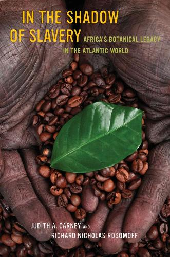 In the Shadow of Slavery: Africa's Botanical Legacy in the Atlantic World (Paperback)
