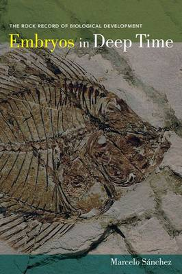 Embryos in Deep Time: The Rock Record of Biological Development (Hardback)
