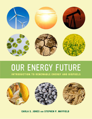 Our Energy Future: Introduction to Renewable Energy and Biofuels (Paperback)