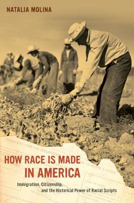 How Race Is Made in America: Immigration, Citizenship, and the Historical Power of Racial Scripts - American Crossroads 38 (Paperback)