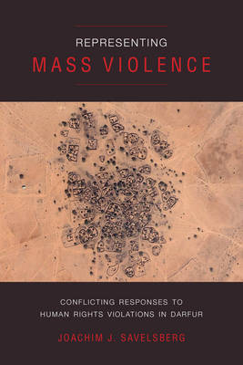 Representing Mass Violence: Conflicting Responses to Human Rights Violations in Darfur (Paperback)