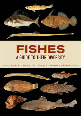 Fishes: A Guide to Their Diversity (Paperback)