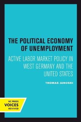 The Political Economy of Unemployment (Paperback)