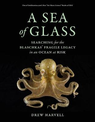 A Sea of Glass: Searching for the Blaschkas' Fragile Legacy in an Ocean at Risk - Organisms and Environments 13 (Paperback)