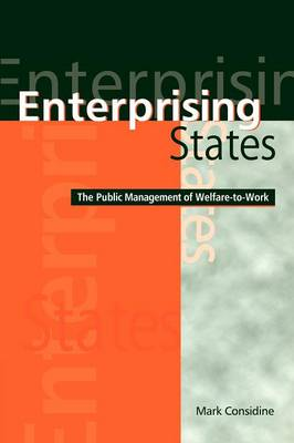 Enterprising States: The Public Management of Welfare-to-Work (Paperback)