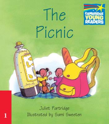 The Picnic Level 1 ELT Edition (Paperback)