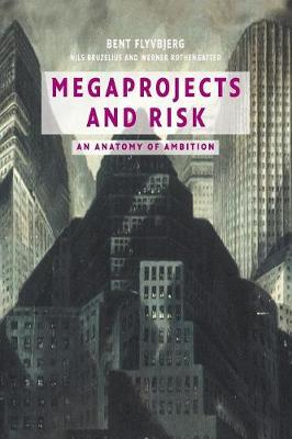 Megaprojects and Risk: An Anatomy of Ambition (Paperback)