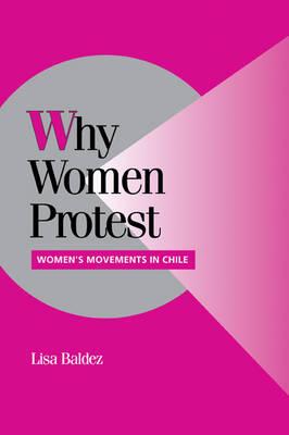 Cambridge Studies in Comparative Politics: Why Women Protest: Women's Movements in Chile (Paperback)