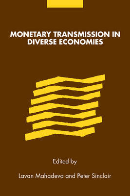 Monetary Transmission in Diverse Economies (Paperback)