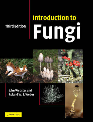 Introduction to Fungi (Paperback)
