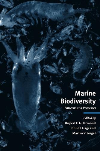 Marine Biodiversity: Patterns and Processes (Paperback)