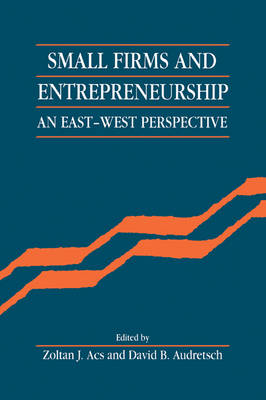 Small Firms and Entrepreneurship: An East-West Perspective (Paperback)