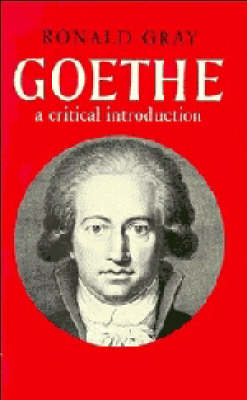Major European Authors Series: Goethe: A Critical Introduction (Paperback)