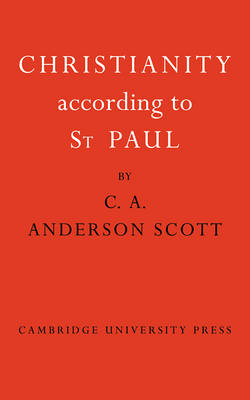 Christianity According to St Paul (Paperback)