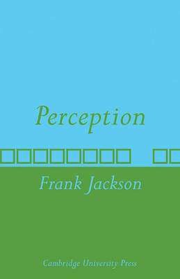 Perception: A representative theory (Paperback)
