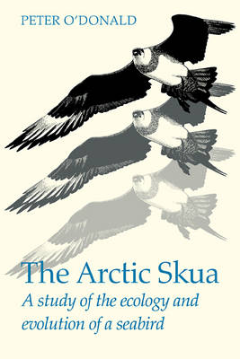The Arctic Skua: A study of the ecology and evolution of a seabird (Paperback)
