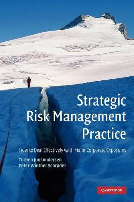 Strategic Risk Management Practice: How to Deal Effectively with Major Corporate Exposures (Hardback)