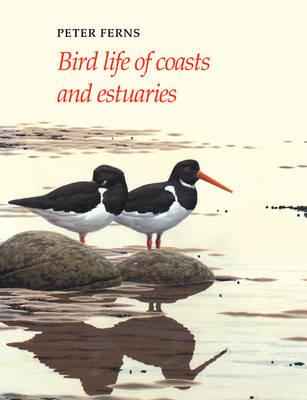 Bird Life Series: Bird Life of Coasts and Estuaries (Paperback)