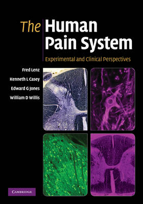 The Human Pain System: Experimental and Clinical Perspectives (Hardback)