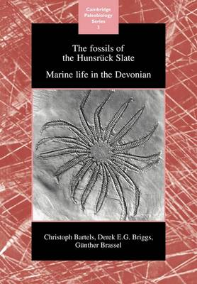 Cambridge Paleobiology Series: The Fossils of the Hunsruck Slate: Marine Life in the Devonian Series Number 3 (Paperback)