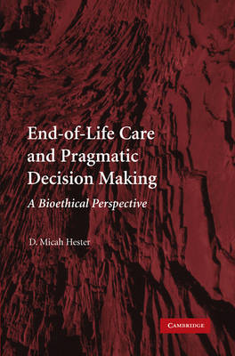End-of-Life Care and Pragmatic Decision Making: A Bioethical Perspective (Paperback)
