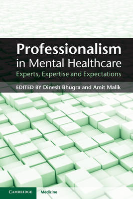 Professionalism in Mental Healthcare: Experts, Expertise and Expectations (Paperback)