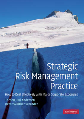 Strategic Risk Management Practice: How to Deal Effectively with Major Corporate Exposures (Paperback)