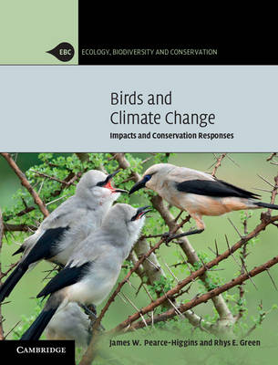 Birds and Climate Change: Impacts and Conservation Responses - Ecology, Biodiversity and Conservation (Paperback)