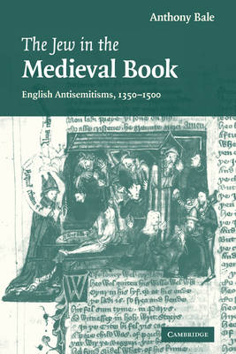 The Jew in the Medieval Book: English Antisemitisms 1350-1500 - Cambridge Studies in Medieval Literature 60 (Paperback)