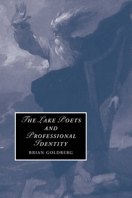 Cambridge Studies in Romanticism: The Lake Poets and Professional Identity Series Number 71 (Paperback)
