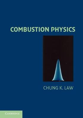 Combustion Physics (Paperback)