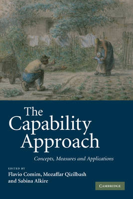 The Capability Approach: Concepts, Measures and Applications (Paperback)