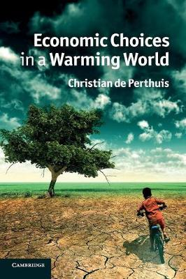 Economic Choices in a Warming World (Paperback)