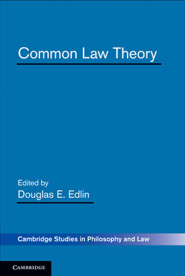 Common Law Theory - Cambridge Studies in Philosophy and Law (Paperback)