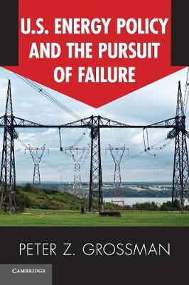 US Energy Policy and the Pursuit of Failure (Paperback)