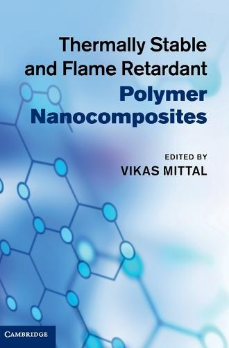 Thermally Stable and Flame Retardant Polymer Nanocomposites (Hardback)