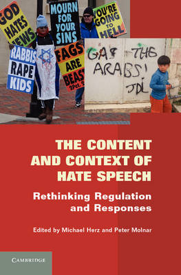 The Content and Context of Hate Speech: Rethinking Regulation and Responses (Hardback)