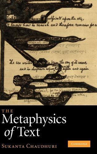 The Metaphysics of Text (Hardback)