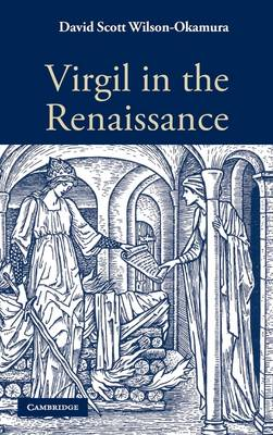 Virgil in the Renaissance (Hardback)