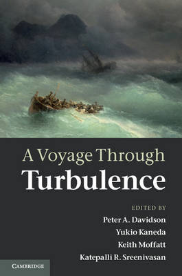 A Voyage Through Turbulence (Hardback)