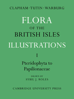 Flora of the British Isles: Flora of the British Isles Pteridophyta-Papilionaceae v. 1 - Flora of the British Isles 4 Volume Paperback Set (Paperback)