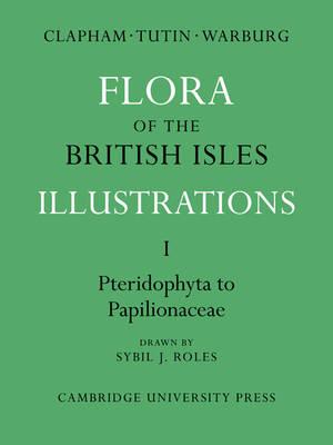 Flora of the British Isles 4 Volume Paperback Set Flora of the British Isles: Pteridophyta-Papilionaceae Part 1 (Paperback)