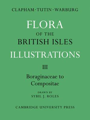 Flora of the British Isles: Illustrations - Flora of the British Isles 4 Volume Paperback Set (Paperback)