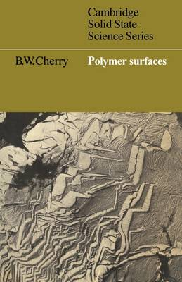 Cambridge Solid State Science Series: Polymer Surfaces (Paperback)