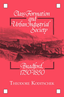 Class Formation and Urban Industrial Society: Bradford, 1750-1850 (Hardback)