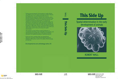 This Side Up: Spatial Determination in the Early Development of Animals - Developmental and Cell Biology Series 24 (Hardback)